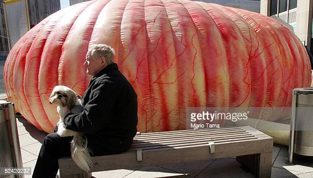 A man and dog sit outside the Super Colon an 8foot tall 20foot long interactive replica of a human colon during Community Colon Cancer Prevention Day...