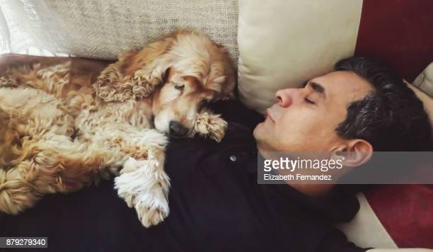 man and dog sleeping on sofa at living room - americas next top dog stock pictures, royalty-free photos & images