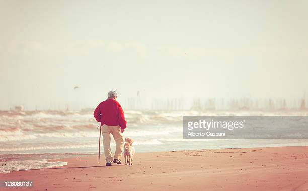 World S Best Dog Walking Cane Stock Pictures Photos And
