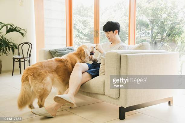 Man and Golden Retrievers sitting on the couch
