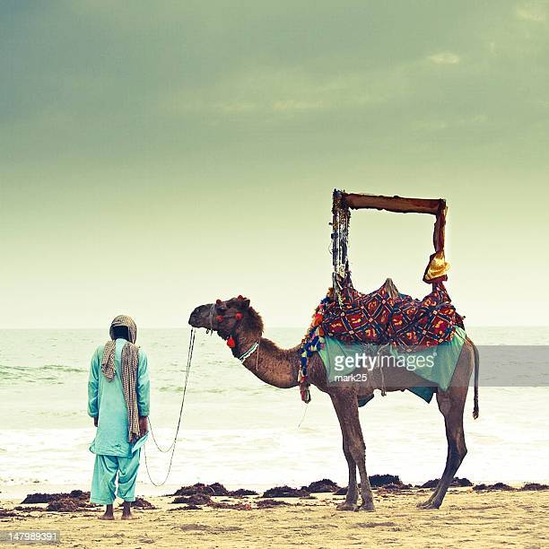Man and his camel at beach