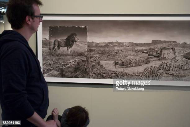Man and his child look over a photograph taken by Nick Brandt of an image of a lion place near a rock quarry April 2, 2017 at the annual display by...