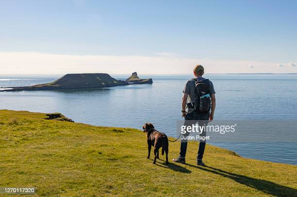 man and his dog look towards worm's head, rhossili bay - cliff stock pictures, royalty-free photos & images