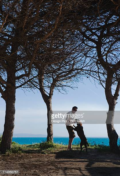 a man and his dog playing on arte y vida beach - arte stock pictures, royalty-free photos & images