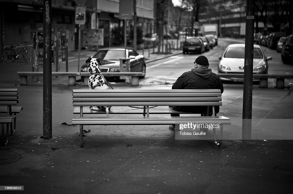 Man and his dog sitting on bench : Stock-Foto