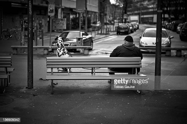 man and his dog sitting on bench - tobias gaulke stock-fotos und bilder