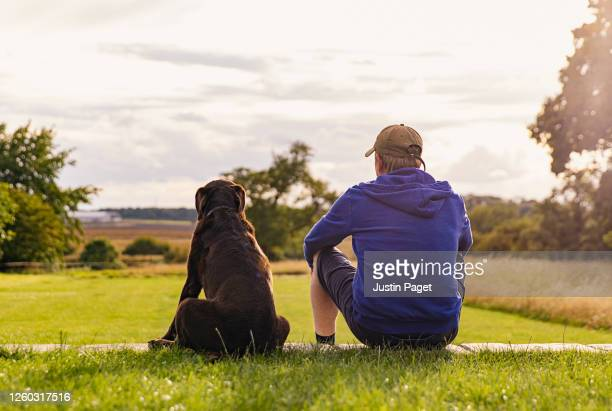man and his dog take in the view - back stock pictures, royalty-free photos & images