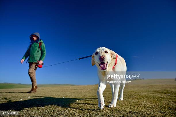 Man and his dog walking in countryside