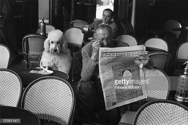 Man And His Poodle In Les DeuxMagots Cafe In SaintGermainDesPres