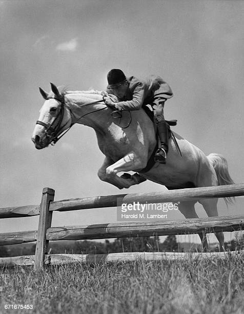 man and horse jumping fence  - {{relatedsearchurl(carousel.phrase)}} ストックフォトと画像