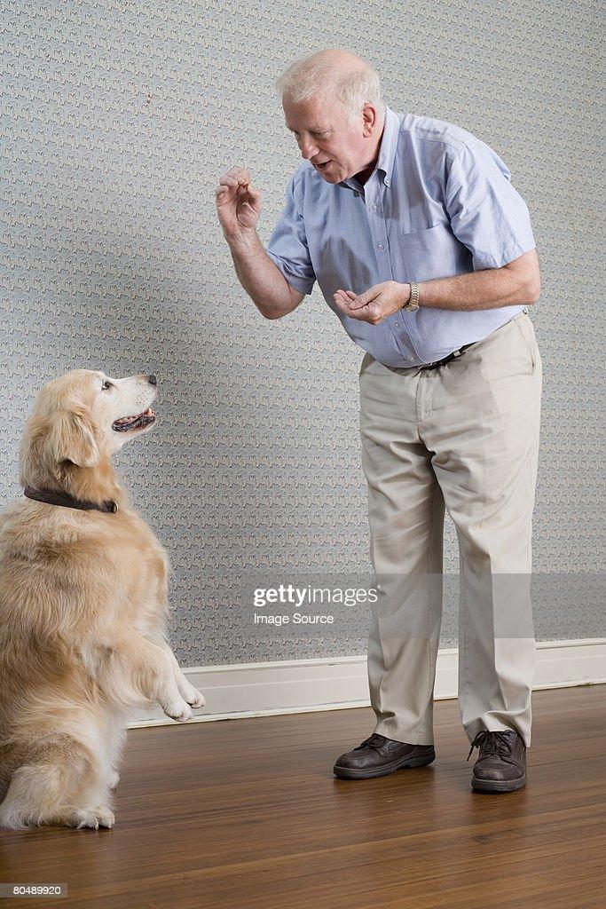 Man and labrador : Stock Photo