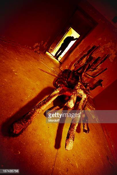 man and surreal creature in abandoned room - ugly spiders stock photos and pictures