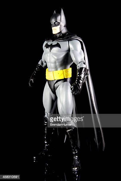 Man and the Bat