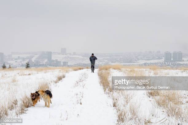 Man and two dogs having good time far from the city in winter