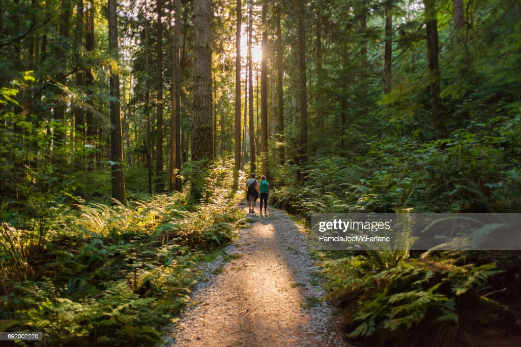 Man and Woman Hikers Admiring Sunbeams Streaming Through Trees : Stock Photo