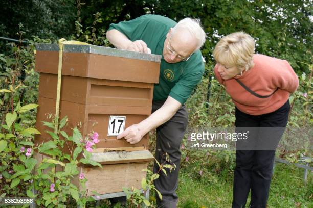 A man and woman looking at a apiary beehive at Manchester Beekeepers