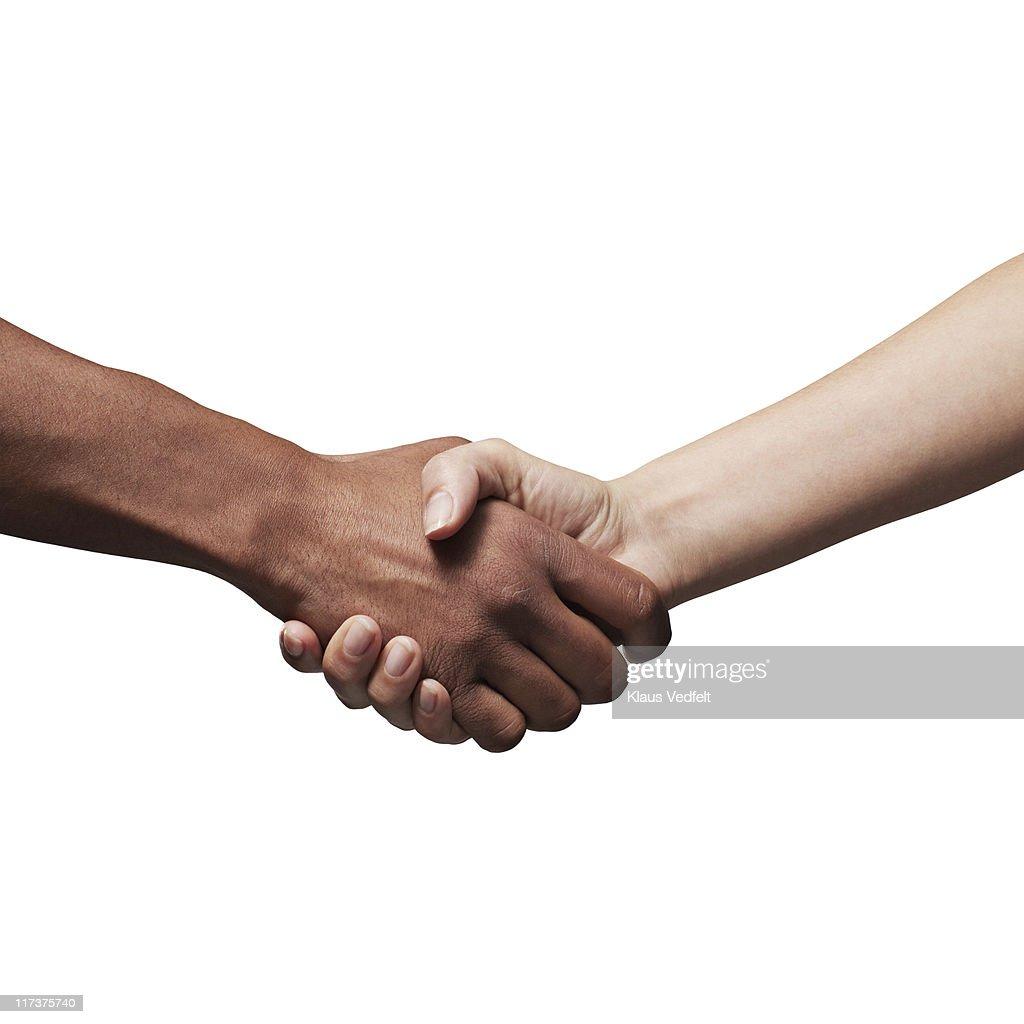 Man and woman making handshake : Stock Photo