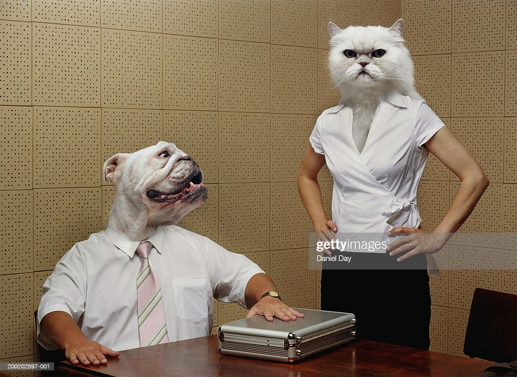 Man and woman metamorphasised as cat and dog