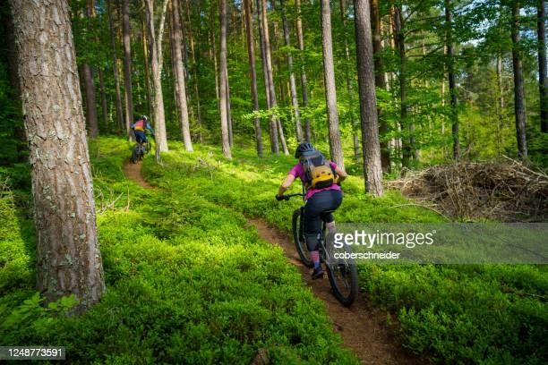 man and woman mountain biking through the forest, klagenfurt, carinthia, austria - クラーゲンフルト ストックフォトと画像