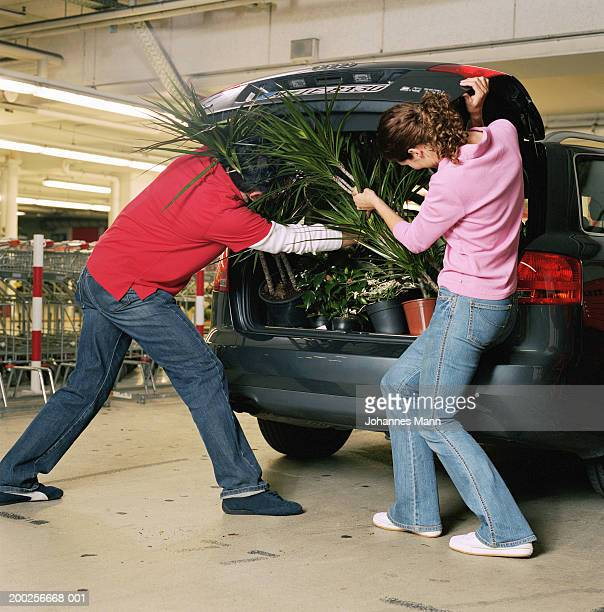 man and woman packing boot of car with pot plants, rear view - man bending over from behind stock photos and pictures