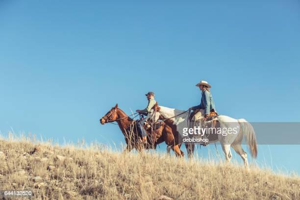homem e mulher, montando o cavalo colina gramada - cavalo família do cavalo - fotografias e filmes do acervo
