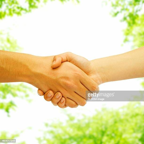 Man And Woman Shaking Hand