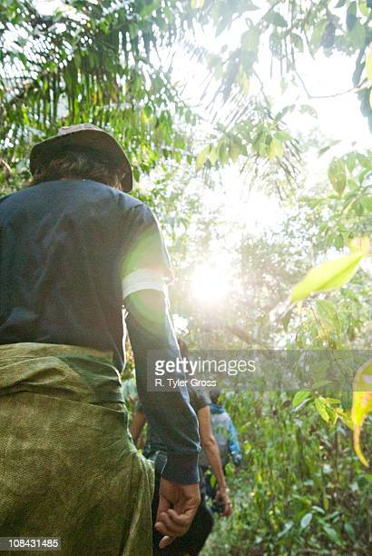 a man and woman walk through the amazon rainforest furing the mid morning. - peruvian amazon stock pictures, royalty-free photos & images