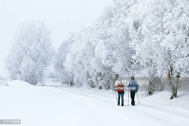 Man and woman walking in a winter landscape