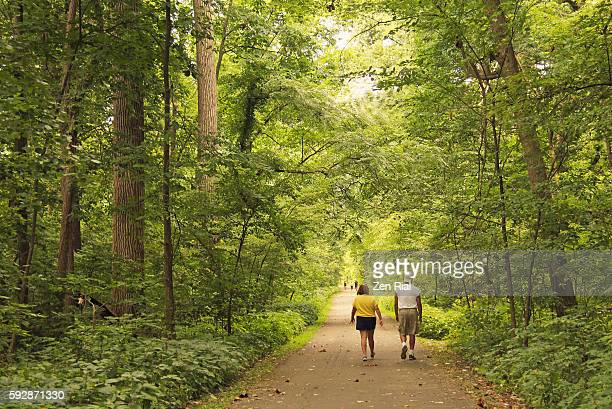 a man and woman walking leisurely on a path in a wooded area under golden morning light - zen rial stock photos and pictures