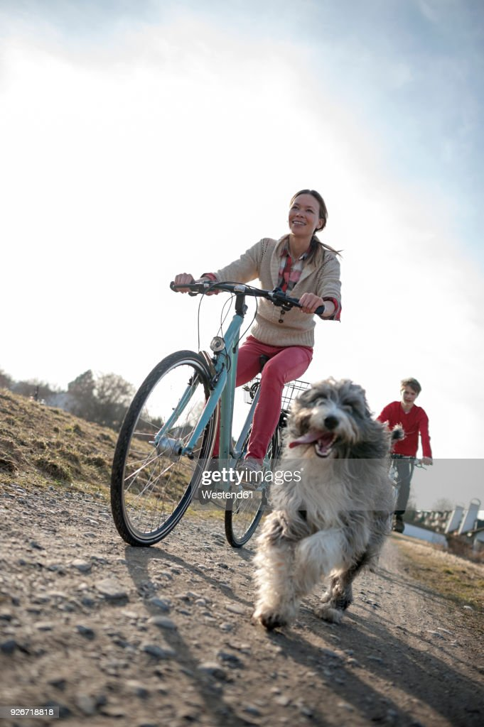 Man and woman with dog riding bicycle on dirt track : Stock Photo