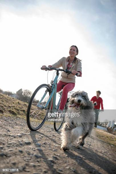 Man and woman with dog riding bicycle on dirt track