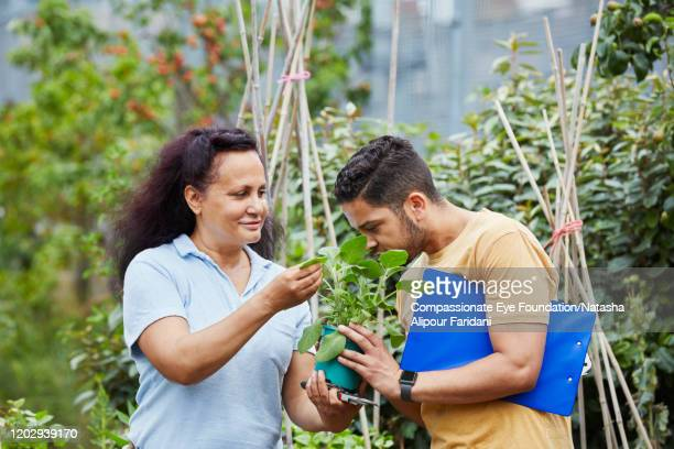 man and woman working in community garden smelling plant - compassionate eye foundation stock pictures, royalty-free photos & images