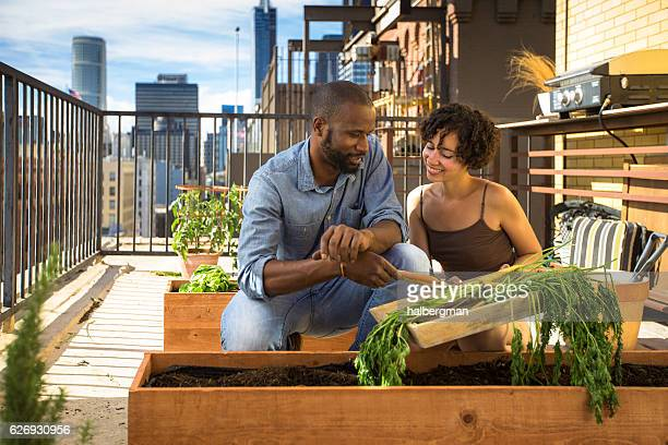 Man and Women Working Together in Rooftop Garden