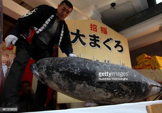 Man arranges a 2.6 meters long, 260 kilograms weight bluefin tuna for offe to god at Nishinomiya Shrine, the head shrine of Ebisu sect, a deity of...