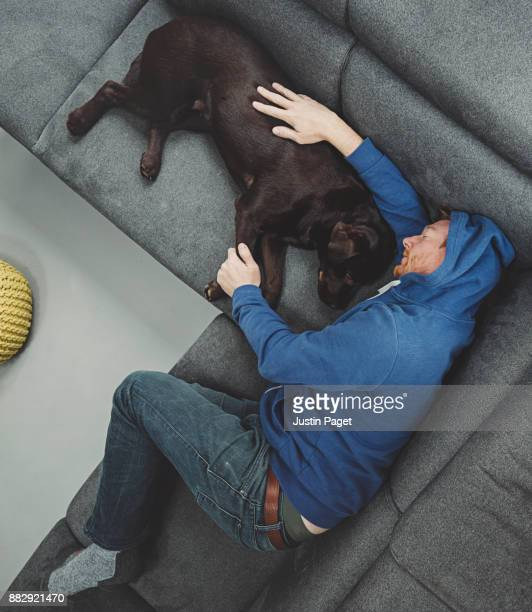 man asleep on sofa with dog - domestic animals stock pictures, royalty-free photos & images