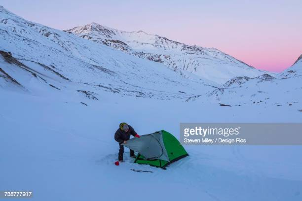 a man assembling a tent after sunset during a winter camping trip in the alaska range, near augustana glacier - miley fotografías e imágenes de stock