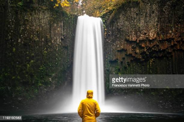 man at abiqua falls, scotts mills, or, us. - waterfall stock pictures, royalty-free photos & images