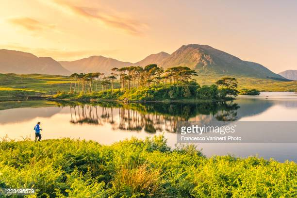 man at derryclare lough and the twelve pines, connemara, ireland. - nature reserve stock pictures, royalty-free photos & images