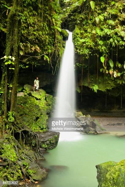 mr man at emerald pools, dominica, caribbean - dominica fotografías e imágenes de stock