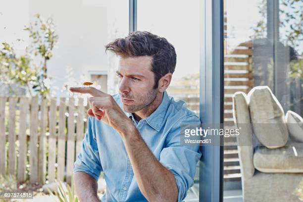 man at home watching cricket on his finger - insecte photos et images de collection