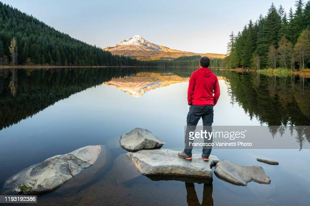 man at trillium lake with mt hood, government camp, oregon, us. - mt hood national forest stock pictures, royalty-free photos & images