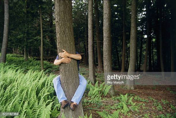 man behind tree - grab stock pictures, royalty-free photos & images