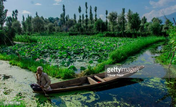 A man boats on Dal lake on July 19 2018 in Srinagar the summer capital of Indian administered Kashmir India Kashmir the Muslim majority state known...