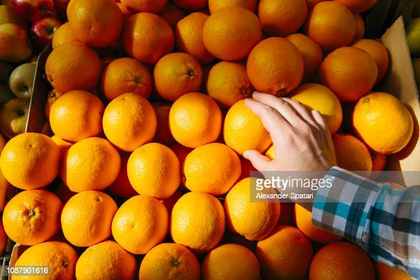 man buying oranges at the farmer's market, personal perspective point of view - juicy stock pictures, royalty-free photos & images