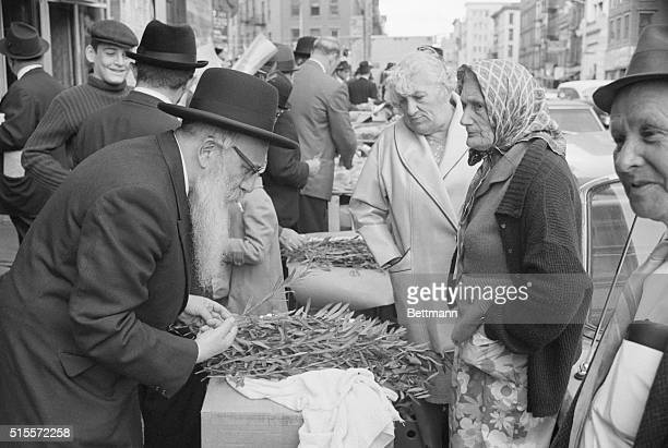 Man buys lulav sprigs on a Manhattan street corner to be used in Jewish Sukkoth celebrations.   Location: lower East Side Manhattan, New York, New...