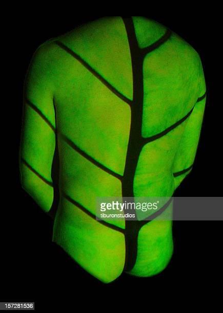 homem: pela natureza - parte do corpo animal - fotografias e filmes do acervo