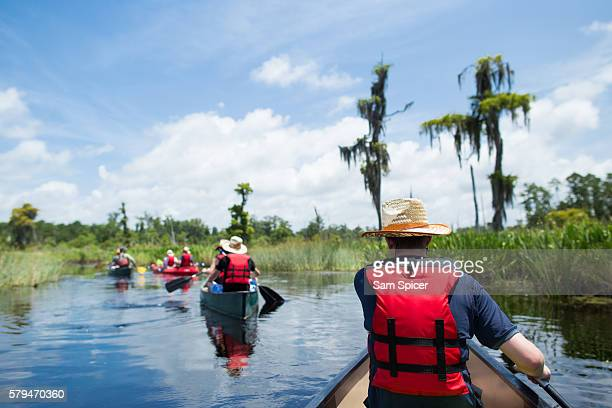 man canoeing through wetlands in louisiana - louisiana stock photos and pictures