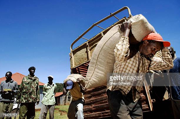 A man caries a sack of food as hundreds of hungry of people wait to for Kenya Red Cross to distribute goods in a village south of Eldoret 07 January...