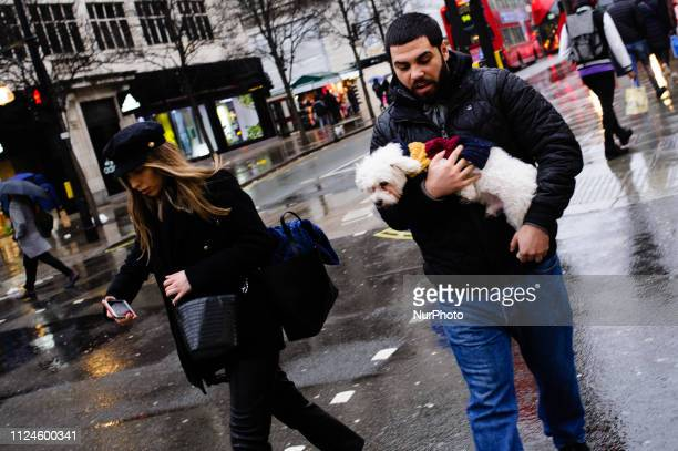 A man carries a dog along Oxford Street on a wet afternoon in London England on February 8 2019 February 15 sees the release of the first monthly...