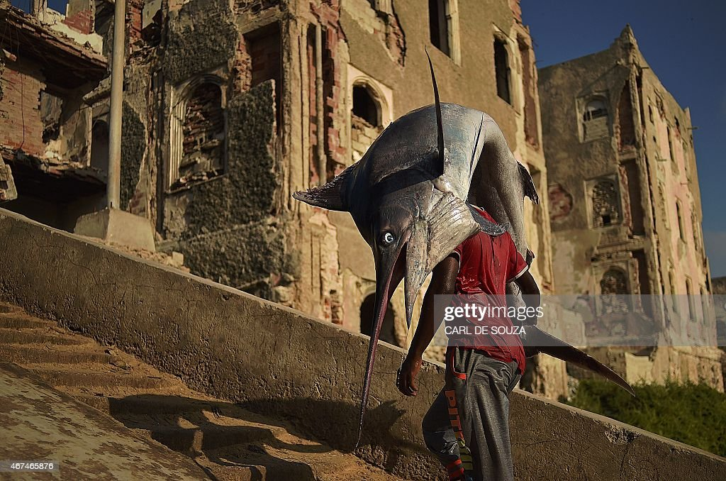 SOMALIA-DAILY-LIFE : News Photo